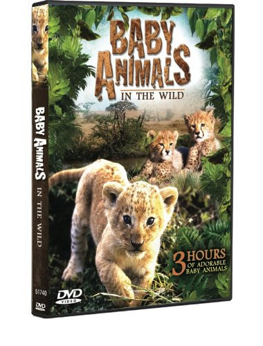 Baby Animals In The Wild 3 Hour Documentary