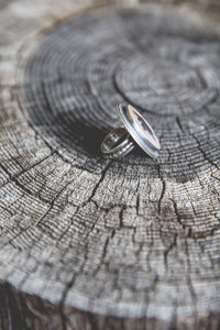 One Tree Ring