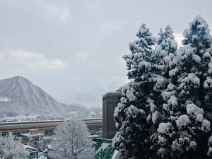 Skiing Japan - APPI Kogen and Gala Yuzawa resorts - Insights