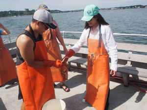 Lobsters and Sustainability in Maine