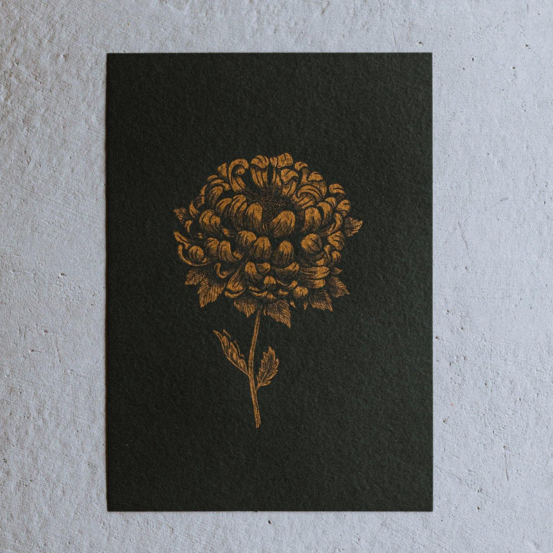 'CHRYSANTHEMUM' - A4 SCREEN PRINT