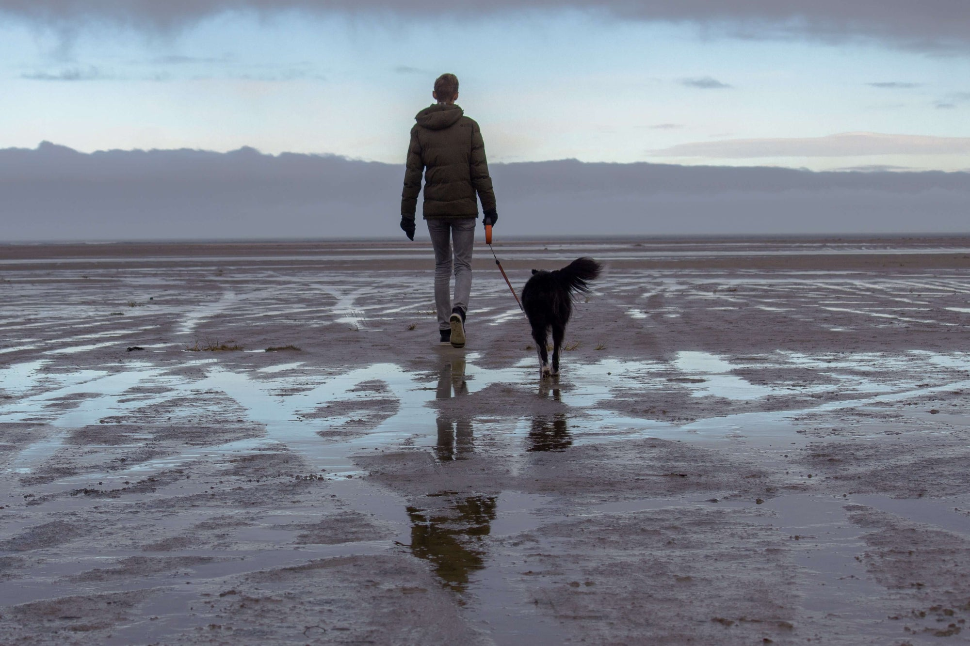 person and dog walking on a beach