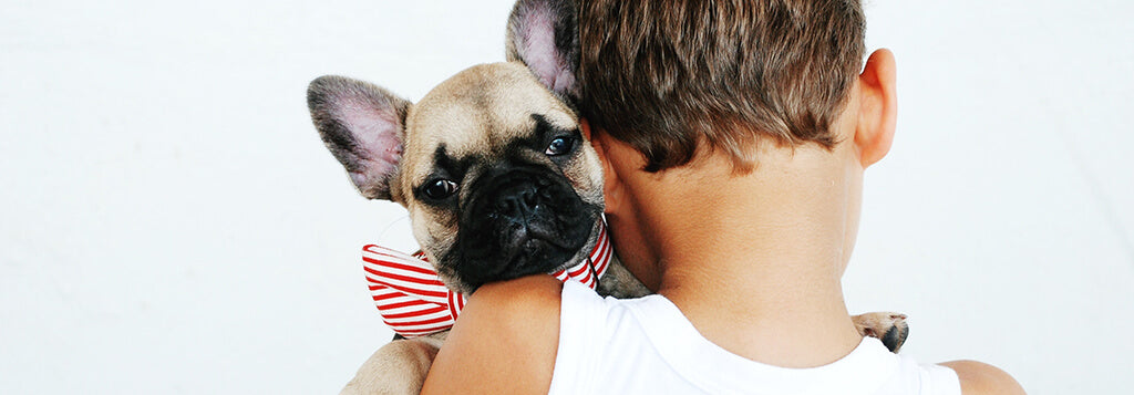 little boy hugging small french bull dog