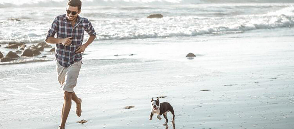 Man and small dog running on the beach