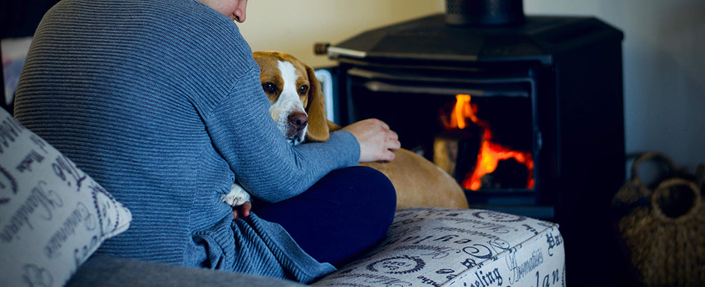 dog with owner by fire