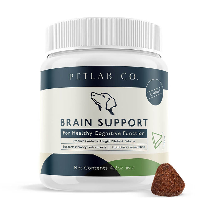 Brain Support Chews