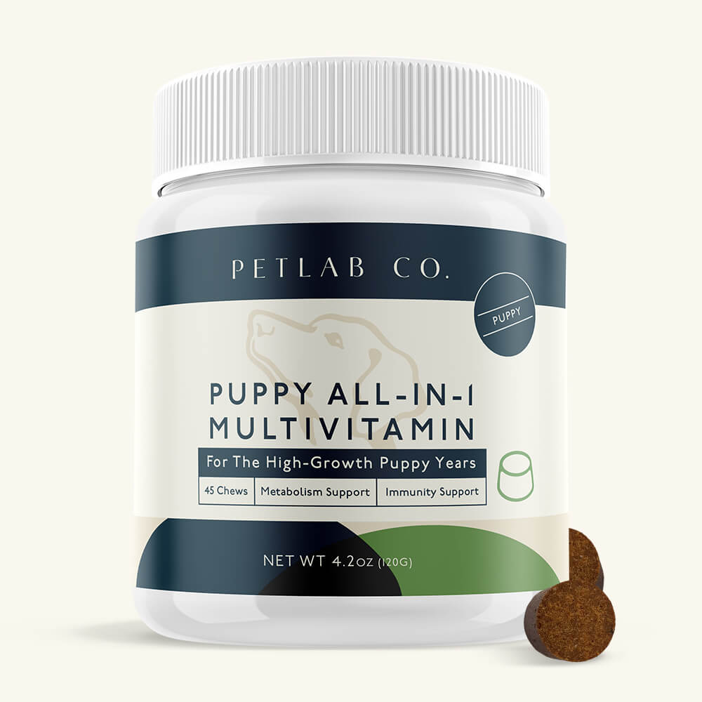 Photo of Puppy All-In-One Vitamin