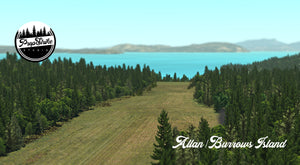 Allan Burrows Island