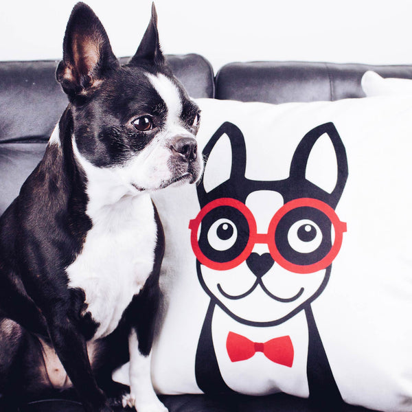 Boston Terrier Throw Pillow Cover - Black