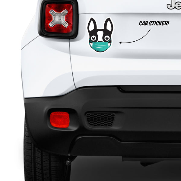 Boston Terrier wearing mask - Car Bumper Sticker - Black - 6""