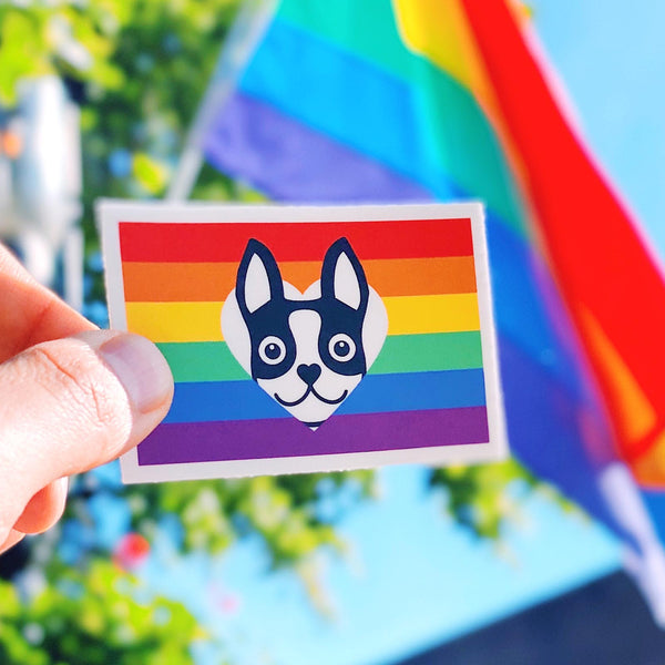 Rainbow Flag Boston Terrier Sticker - Black