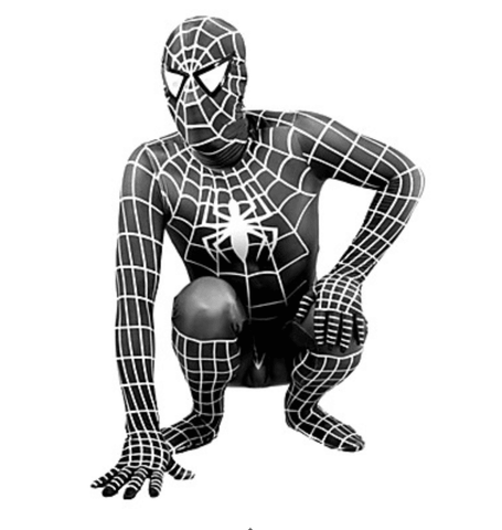 Image of Spider Man Costume