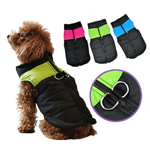 Image of Premium Dog Coat