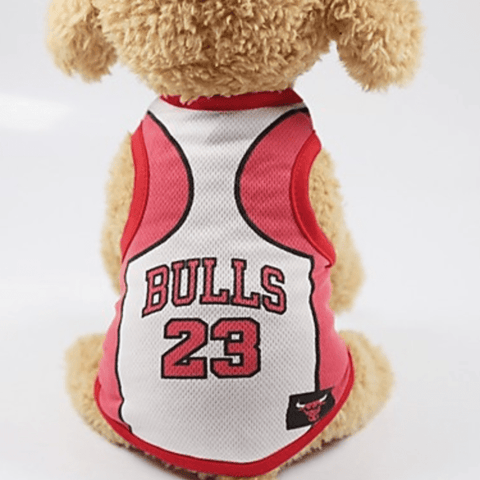 Image of Cute Basketball Jersey