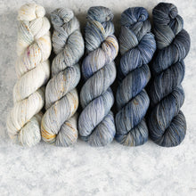 Load image into Gallery viewer, Cat on a Hot Tin Roof - 5 Skein Gradient Set - Sock 100g's