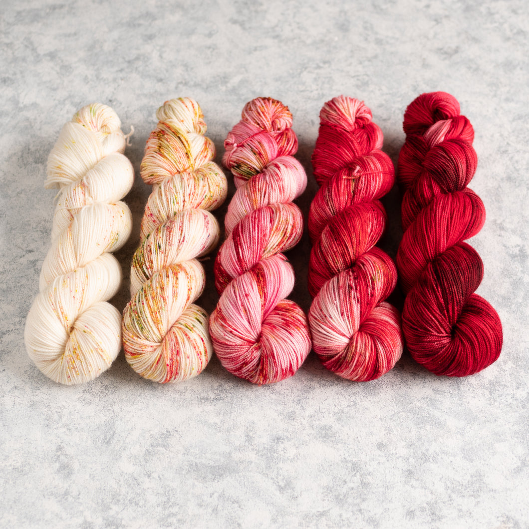 Hey Little Apple Blossom - 5 Skein Gradient Set - Twisty 100g's
