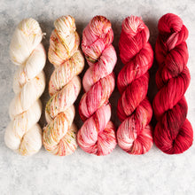 Load image into Gallery viewer, Hey Little Apple Blossom - 5 Skein Gradient Set - Twisty 100g's