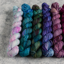 Load image into Gallery viewer, Pixie Uniques - 10 Skein Set - Sock 20g Mini