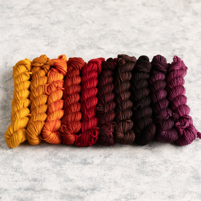 Autumn Rainbow - 10 Skein Gradient Set - DK 20g Mini
