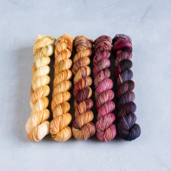 Humulus to Picotee - 5 Skein Gradient Set - Sock 20g Mini