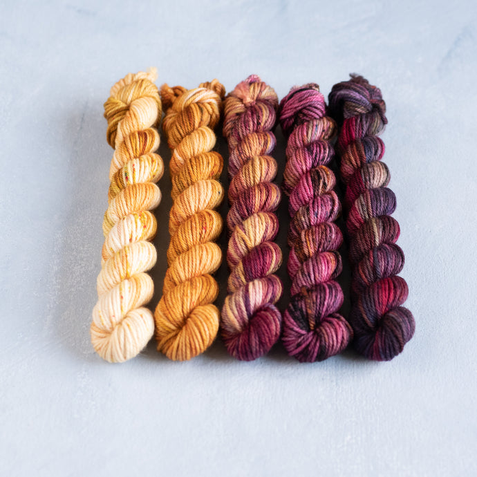 Humulus to Picotee - 5 Skein Gradient Set - DK 20g Mini