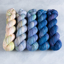 Load image into Gallery viewer, Bluebell Glade - 5 Skein Gradient Set - DK 100g's