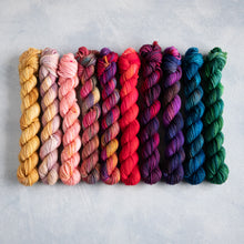 Load image into Gallery viewer, Pixie Faves - 10 Skein  Set - DK 20g Mini