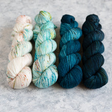 Load image into Gallery viewer, Barefoot - 4 Skein Gradient Set - Sport 100g's