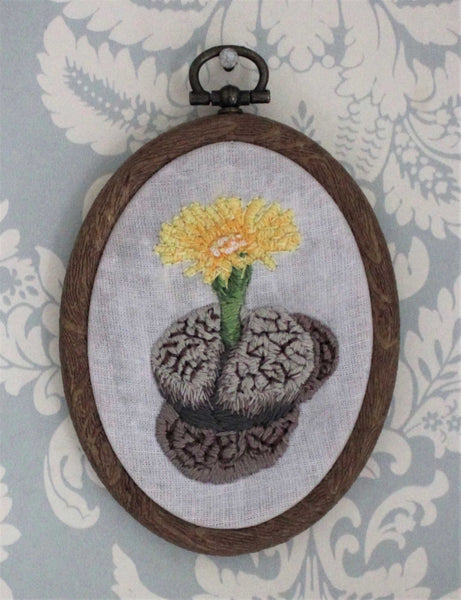 Blooming Lithops Framed Embroidery