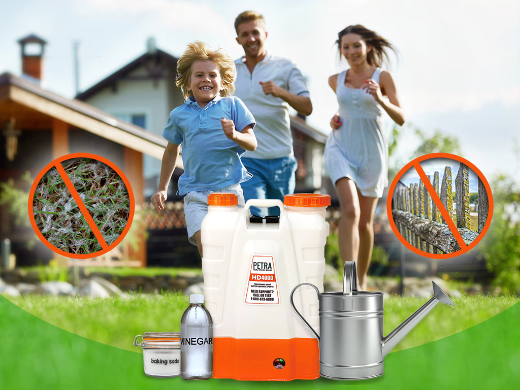 Get rid or lawn mold with the help of Petra HD4000.