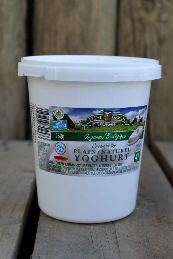 Organic Plain Yogurt