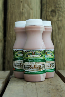 Organic Individual Chocolate Milk