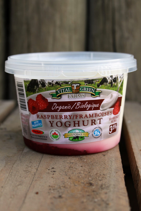 Organic Raspberry Yogurt