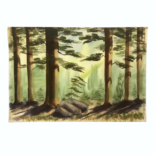 Large California Forest Watercolor, Unsigned, c. 1960s