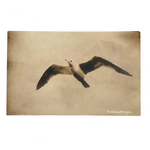 Seagull, Seaside, Oregon, Antique Real Photo Postcard