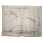 Pencil Drawing of Horse on Lined Paper