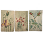Set of Three 1907 Handmade Floral Watercolor Postcards