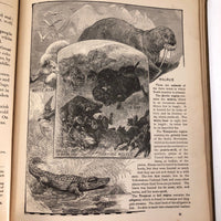 "American Book Company ""Barnes's Elementary Geography"" by James Monteith, 1896 Copyright"