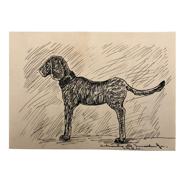 Black Ink Dog Drawing by Charles G. Martin Jr., 1926