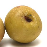 Lovely Old Stone Fruit Pair of Pears (nicely bruised!)