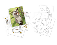 Long-Eared Owl plush sewing pattern - instant download pdf