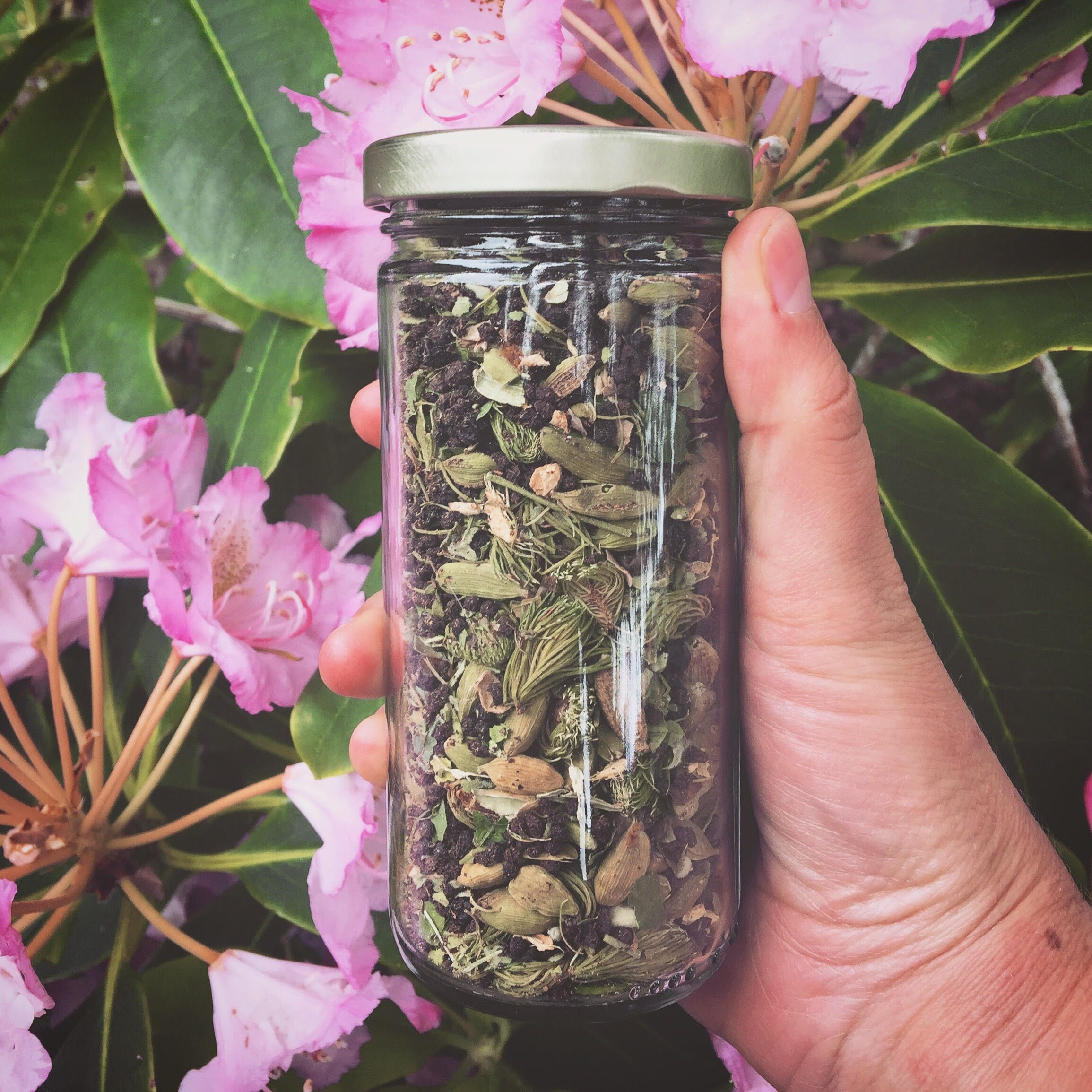 Forest Chai-seasonally inspired tea