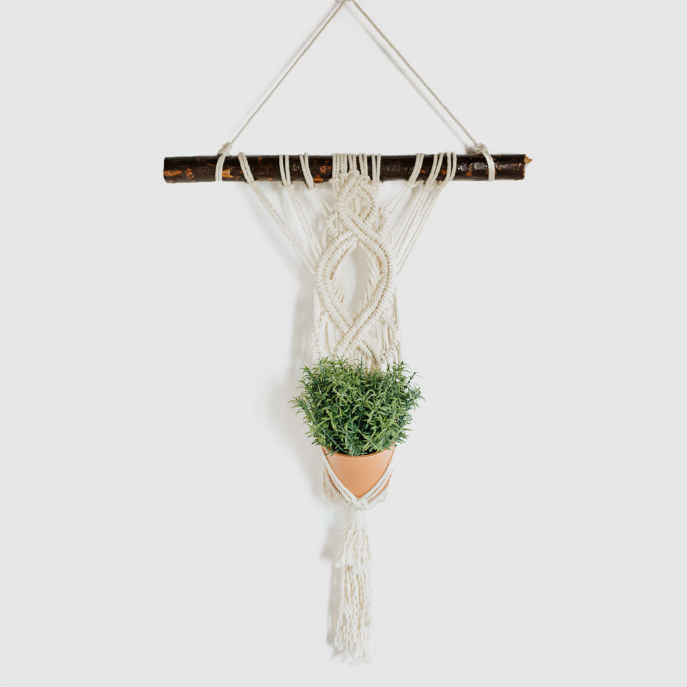 Ivy Wall Hanging Planter