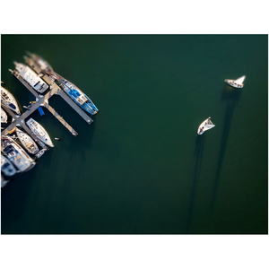 Boats in The Santa Barbara Harbor Art Posters