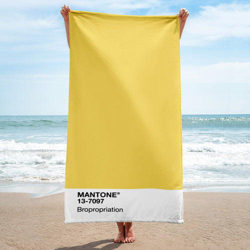Bropropriation - Beach Towel