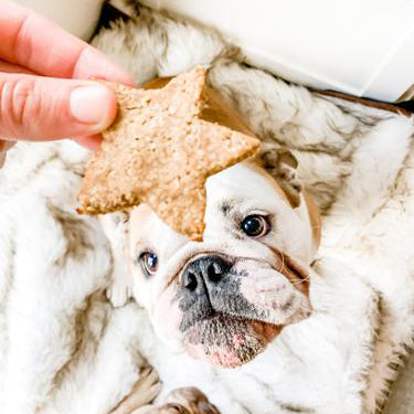 Super Easy Three Ingredient Dog Treats