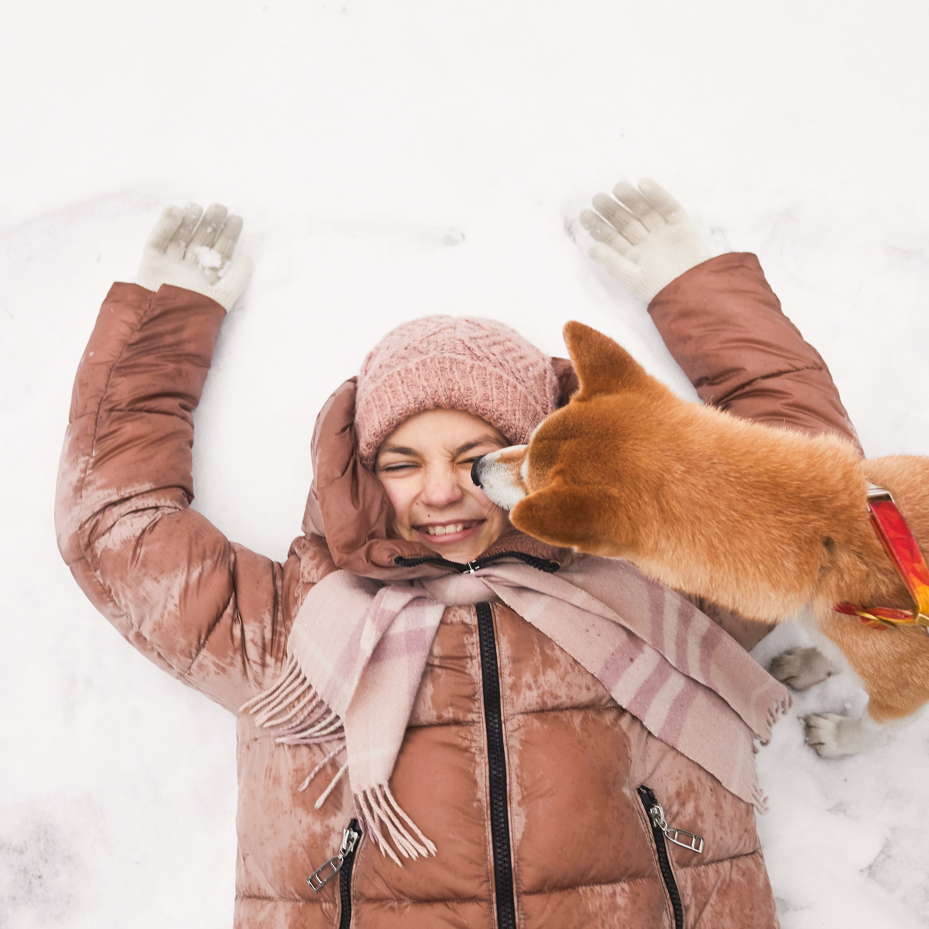 8 Tips for Prepping Your Pup for the Snow