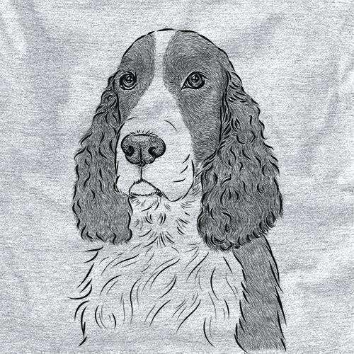Quincy the English Springer Spaniel
