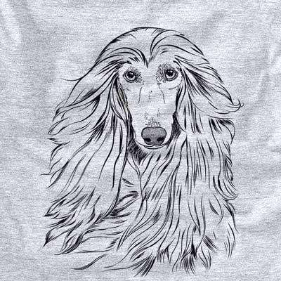 Fabio the Afghan Hound