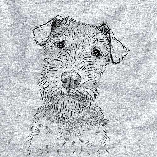 Kiara the Welsh Terrier